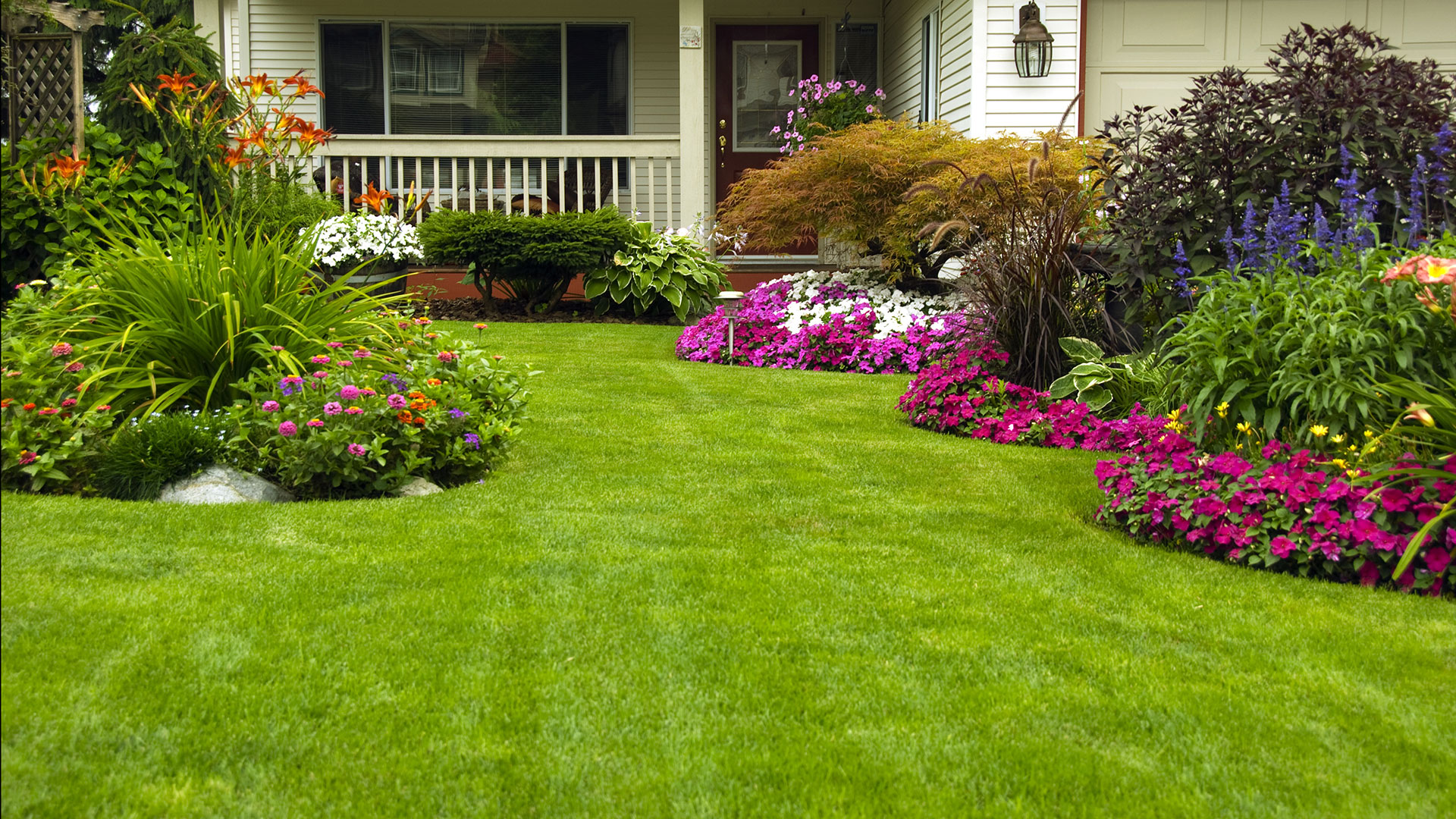 San Francisco Lawn Care